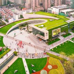 上海自然博物馆, 上海