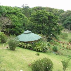 蒙特维多云雾森林保护区, 蒙泰韦尔德哥斯达黎加