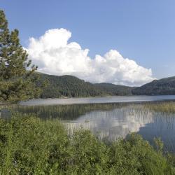 阿邦特湖, 阿邦特