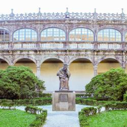 圣地亚哥德孔波斯特拉大学