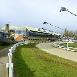 布赖顿和霍夫灰狗体育场