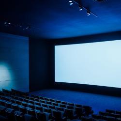 任迪思村庄剧院