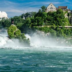 莱茵瀑布, Dachsen
