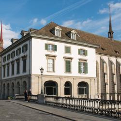 赫尔姆豪斯博物馆, 苏黎世