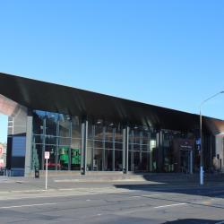 奥塔哥移民博物馆, 但尼丁