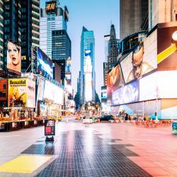 纽约时代广场, 纽约