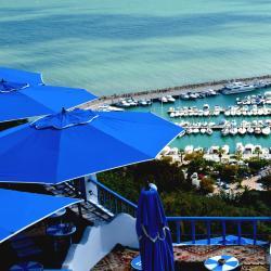 Tunis Governorate