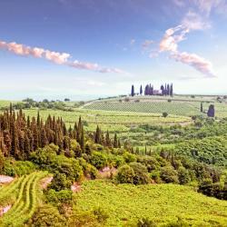 威尼托大区 111个度假村