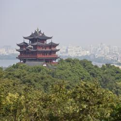 浙江 714间家庭酒店