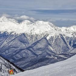 Krasnaya Polyana Ski 43家旅馆