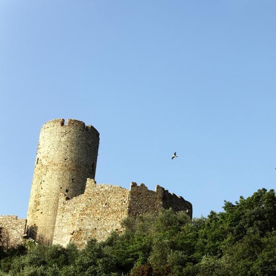 卡塔尼亚乌尔西诺城堡
