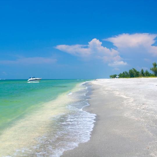 萨尼贝尔岛的沙滩