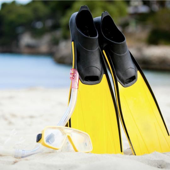 埃尔托罗岛潜水