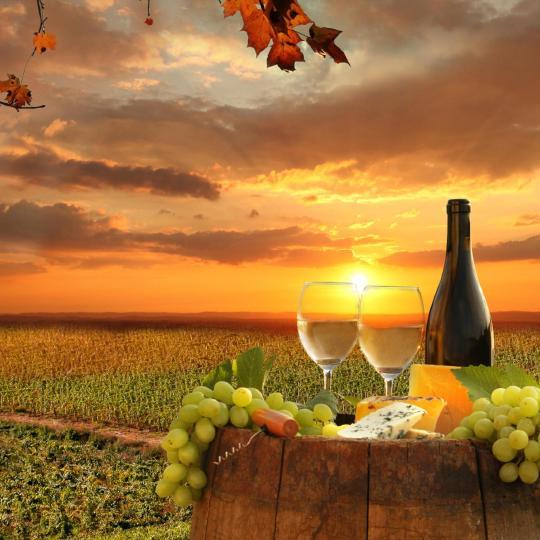 基安蒂红酒之旅