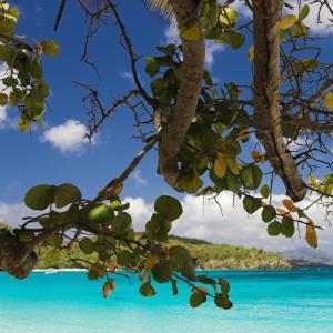 美属维京群岛