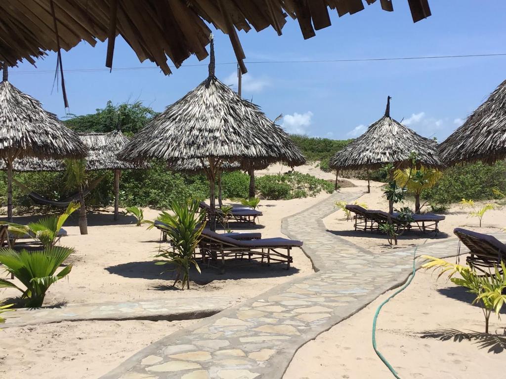 假日公园旁或附近的海滩