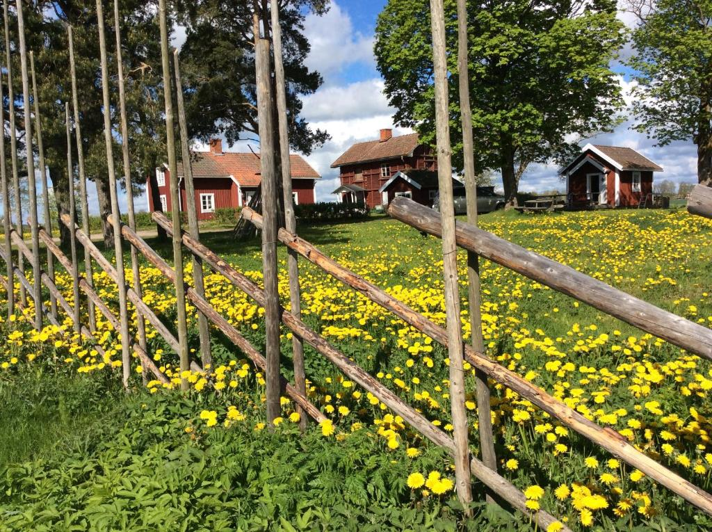Skyberga Torp Kumla外面的花园