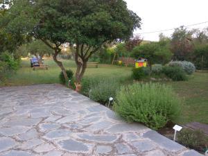 Neria Summer Houses外面的花园