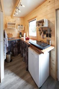 Flüzerhütte的厨房或小厨房
