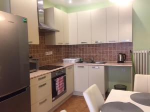 朱莉公寓的厨房或小厨房