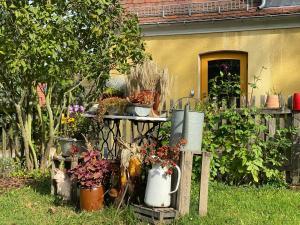 Pension | vonBartsch外面的花园