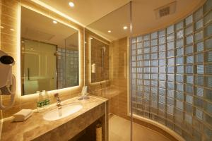 沈阳塔湾智选假日酒店的一间浴室