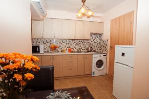 维塔公寓的厨房或小厨房