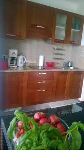 Jurata Apartment的厨房或小厨房