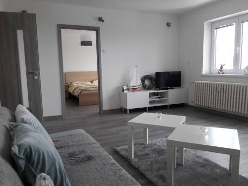 Apartman Dominik的电视和/或娱乐中心