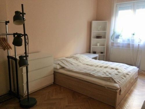 朱莉公寓客房内的一张或多张床位