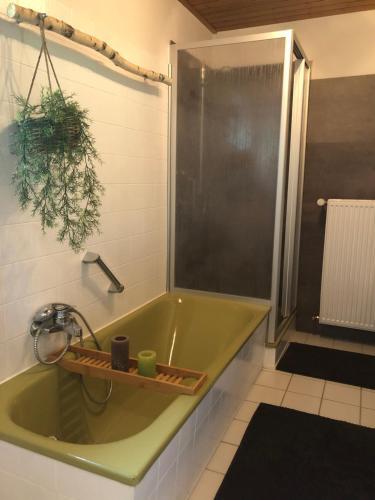 Ferienwohnung Laufenburg的一间浴室
