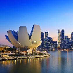 新加坡 806家酒店