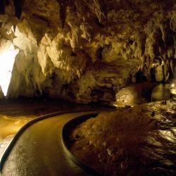 怀托摩洞穴 11家酒店