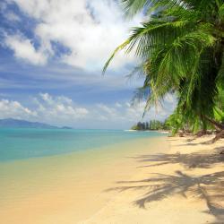 库德岛 27个度假村