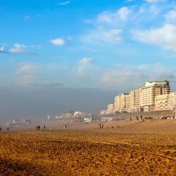 海滨诺德韦克 80家酒店
