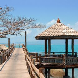 哈林海滩 39个度假村