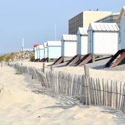 阿尔德洛海滩 12家酒店
