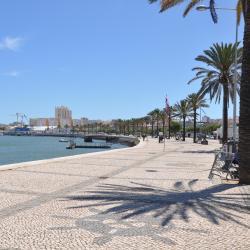 Meia Praia 5家酒店