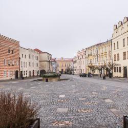 斯拉沃尼采 15家酒店