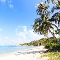 塔林甘海滩 46家酒店