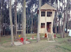 La Paillote Gorilla Camp Site, Kinigi