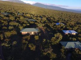 恩戈罗恩戈罗野营豪华帐篷, Ngorongoro