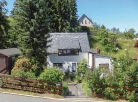 Apartment - Holiday Home Stützengrün/Hundshübel with Fireplace VIII