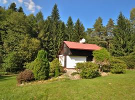 Holiday home in Starobucke Debrne 1307