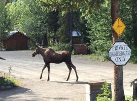 Carlo Creek Lodge, 麦金利公园