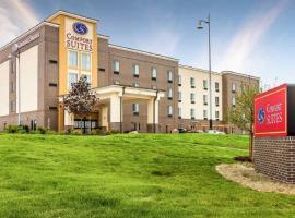 Comfort Suites,位于拉维斯塔的酒店