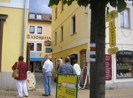 里奥尼塔酒店