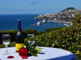 Luxury Villa in Funchal 2 at 6