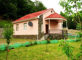 Quliyev House