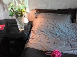Rooms in Sheremetyevo